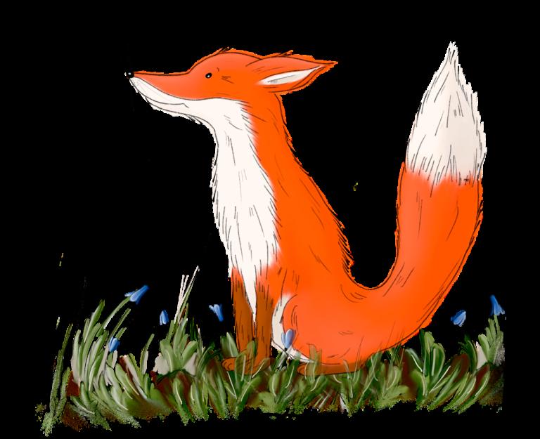 Illustration eines Fuchses, der Nordin Naturliebhaber heißt