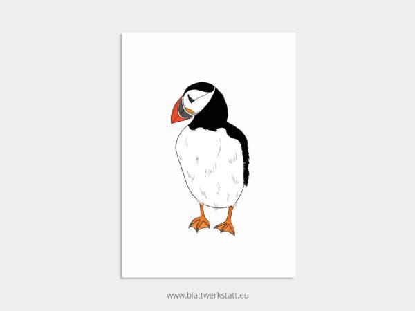 Tierposter A4, Plakat mit Papageientaucher
