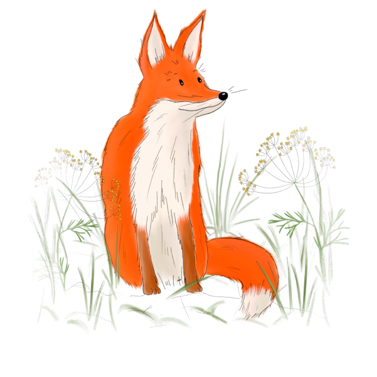 Fuchs Birk Beschützer