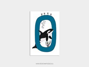ABC Postkarten O wie Orca ²