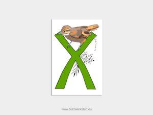 ABC Postkarten X wie Xenops ²
