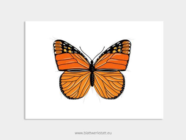 Tierposter A4, Plakat mit Schmetterling