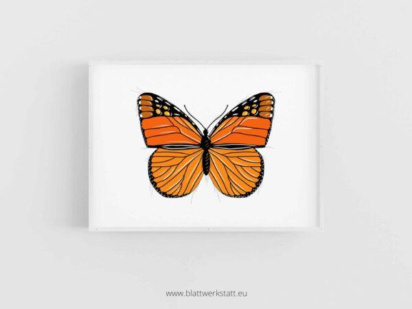 Tierposter A4, Plakat mit Schmetterling im Rahmen