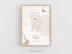 """Geburtsbild für Hunde """"Balu"""" ²"""