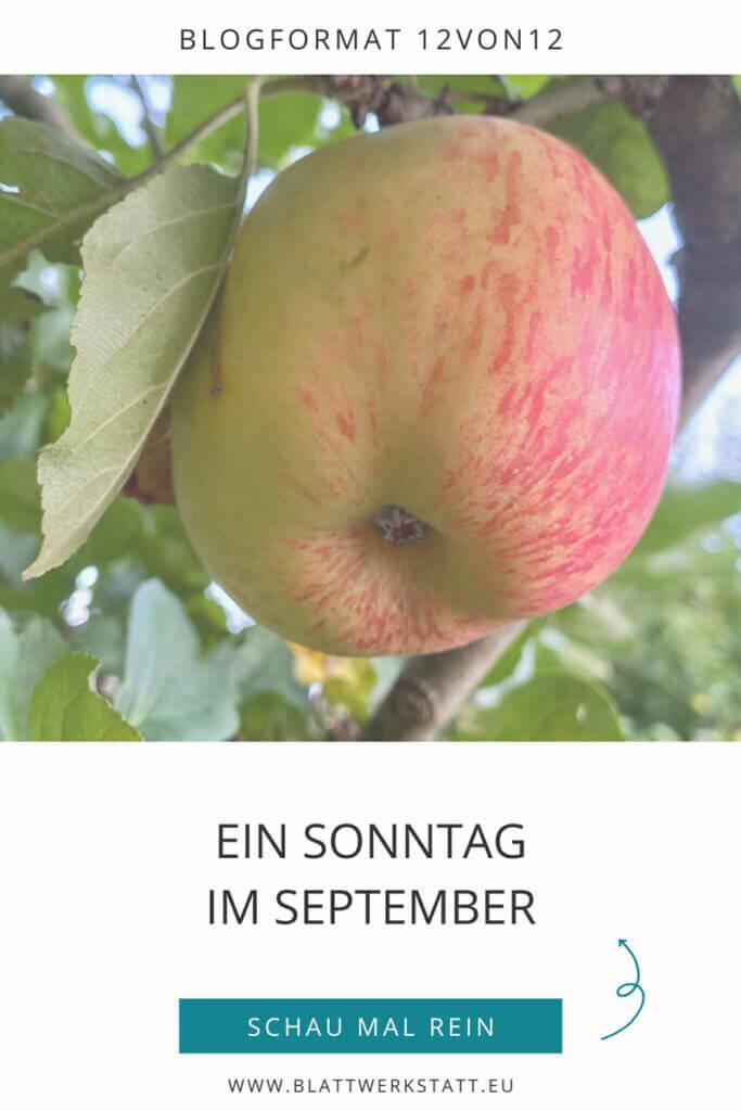 12von12_sonntag-im-september_pingrafik_blogartikel