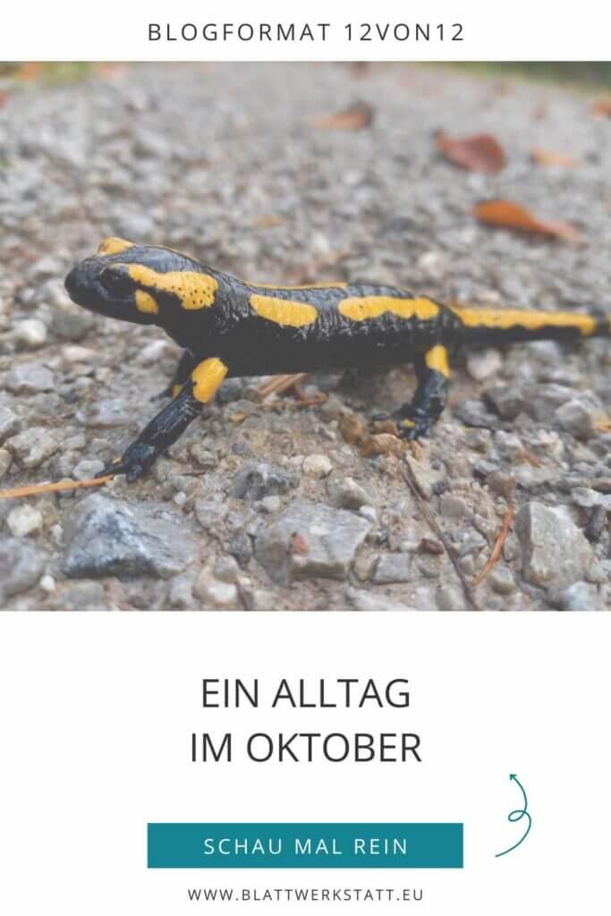 12von12_alltag-im-oktober_pingrafik_blogartikel